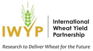 iwyp-Logo