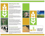 IWYP-leaflet-v2-1-16-1