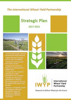 Strategic Plan Full